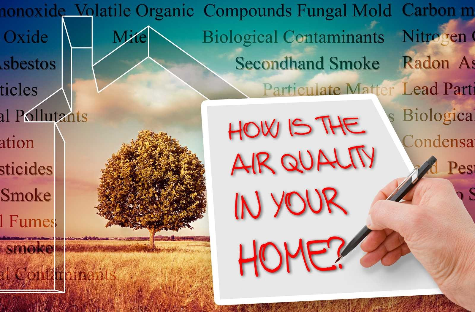 The Significance of Good Indoor Air Quality